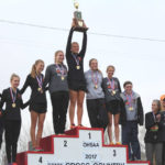 Cross country: Minster girls repeat as Div. III state champs
