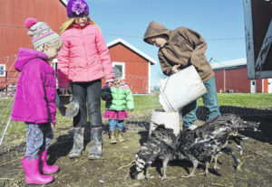Farming the new old-fashioned way