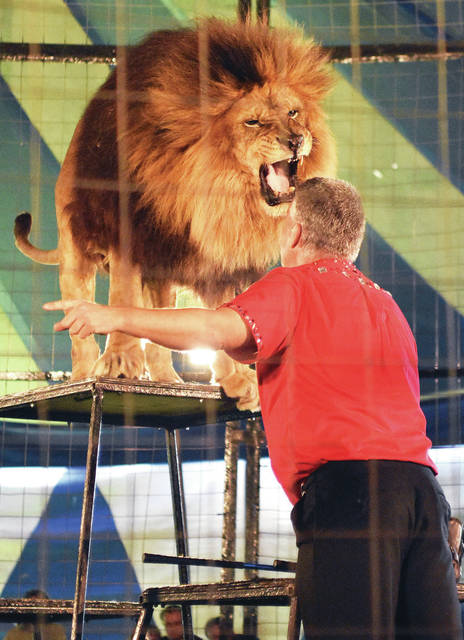 Trey Key, of Hugo, Okla., performs with a lion during his big cat show at the Culpepper & Merriweather Circus in Fort Loramie, Sunday, May 13. The circus also had trapeze, tight wire, contortionist and unicycle performances. Key also had two tigers in his act. The event was sponsored by the Fort Loramie Chamber of Commerce.