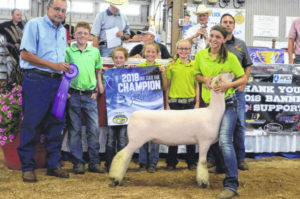 State fair winners